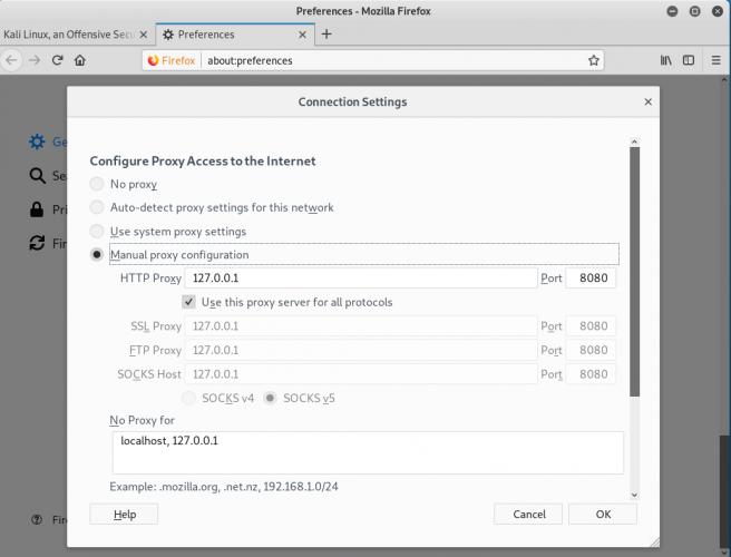 Burp Suite Custom SSL